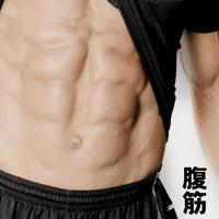 腹筋の写真