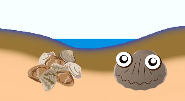 潮干狩り07