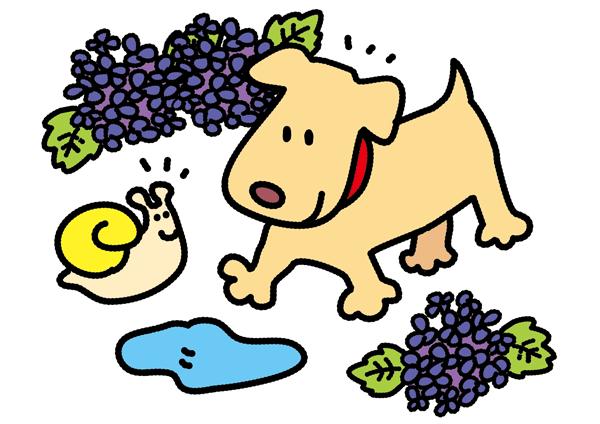 あじさいの前で犬とかたつむりが楽しそうなイラスト