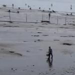 三重県の潮干狩り