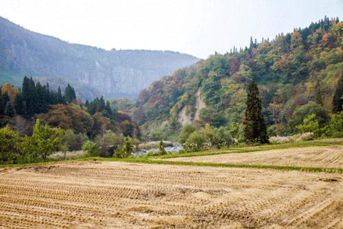 田舎の景色