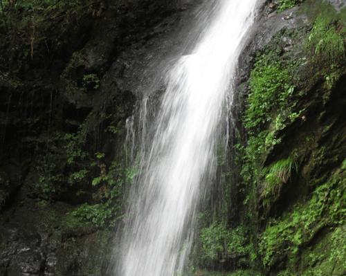琵琶の滝の画像