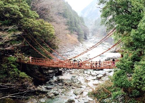かずら橋の画像