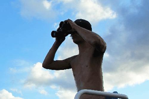 プールで双眼鏡を持つ監視員の男性の画像